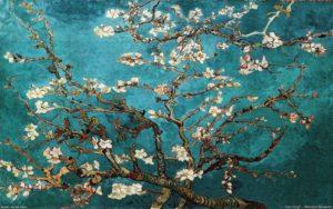Tour Van Gogh